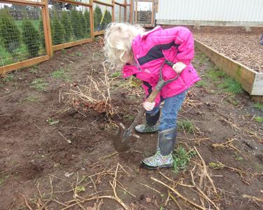 learning-through-gardening
